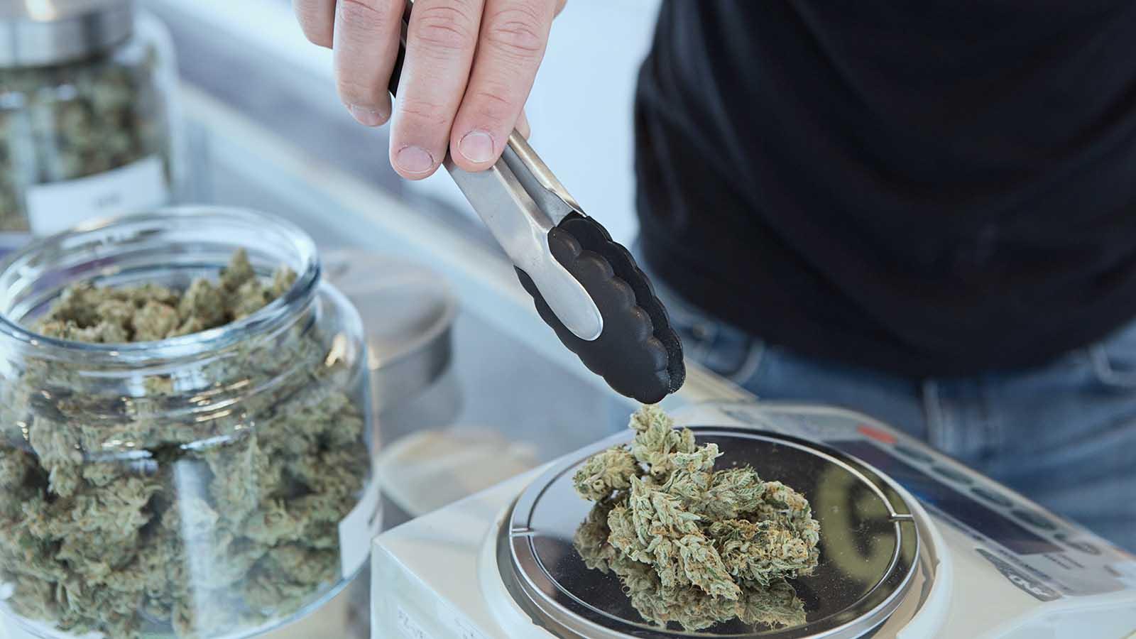 Cannabis Retail Compliance