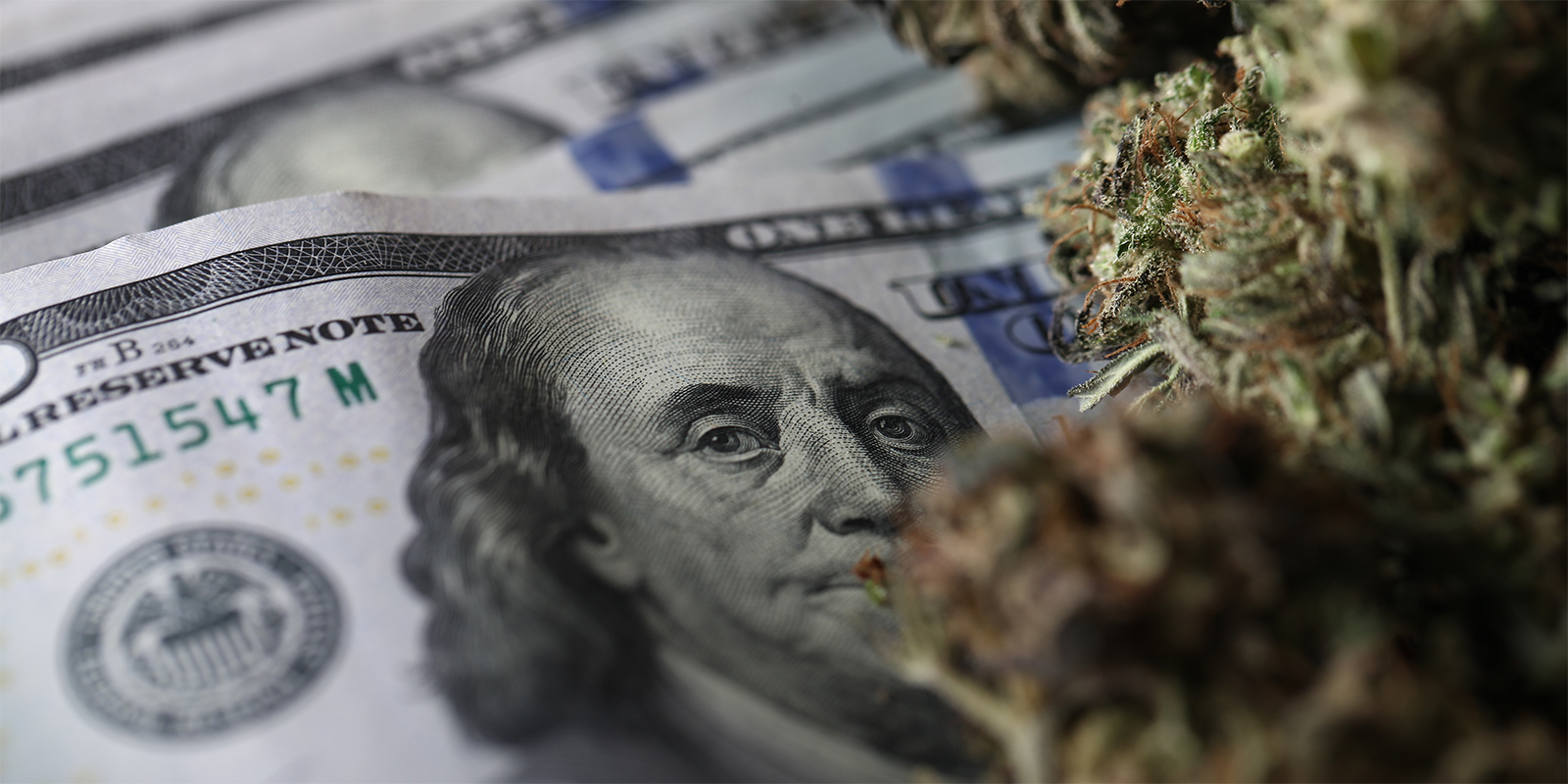 2020 American Cannabis Spending