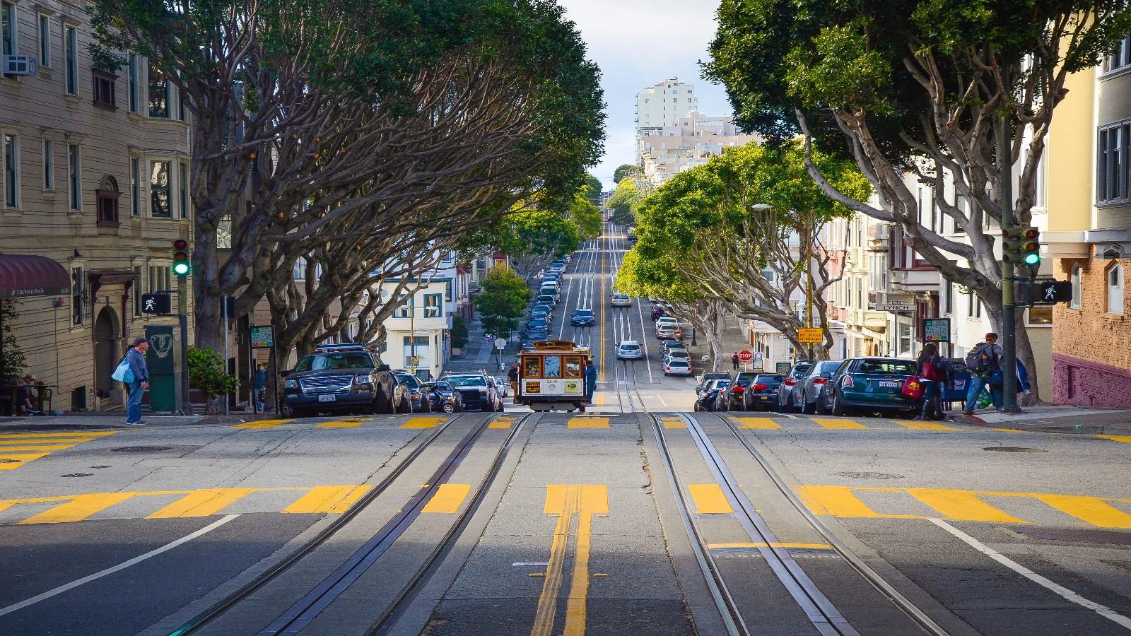 San Francisco Cannabis Dispensaries with Beautiful Design