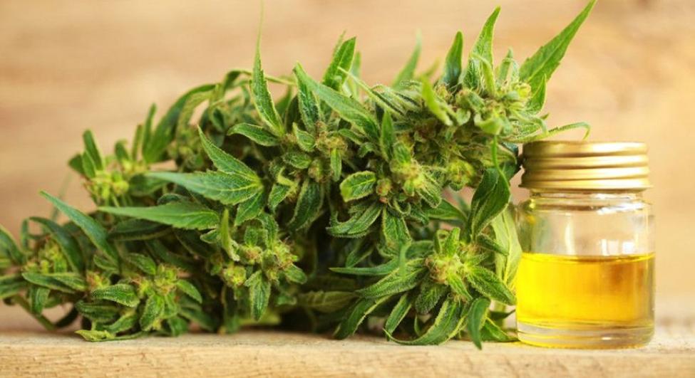 Cannabis Retail and CBD