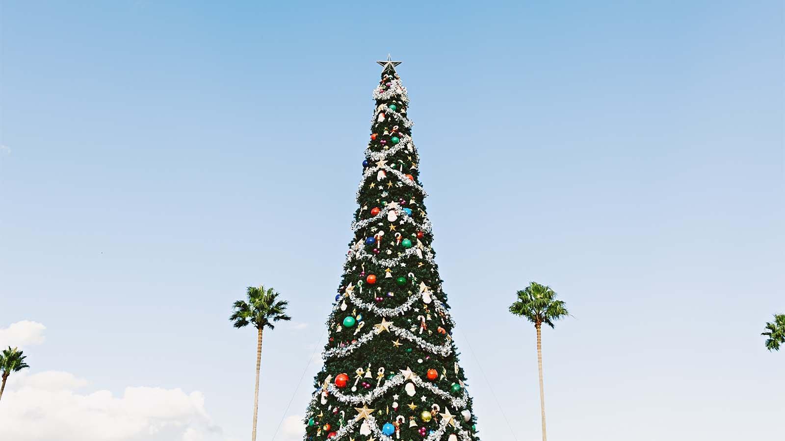 Cova-Cannabis-Retail-Holiday-Season-Tips