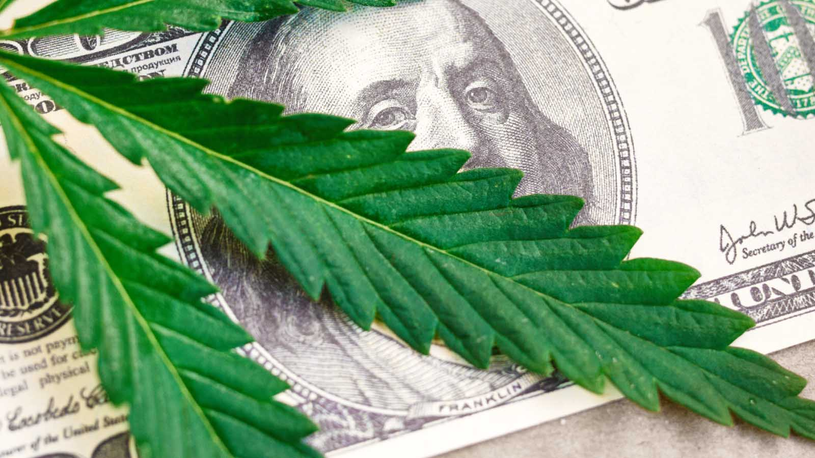 Cannabis Retail IT Tips