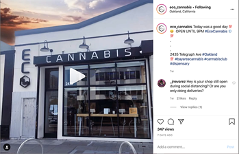 ECO Cannabis on Instagram