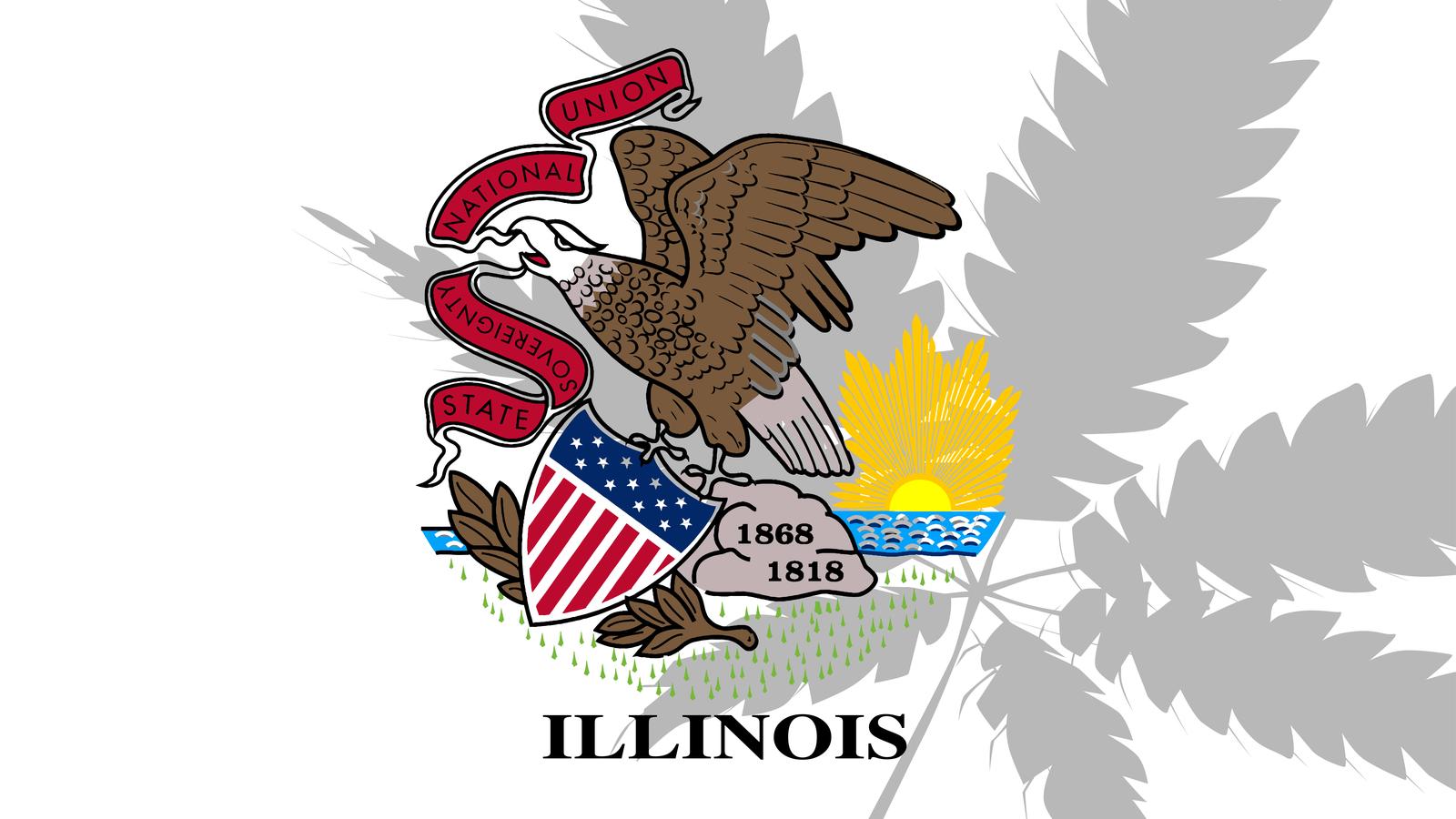 Illinois Social Equity Cannabis Lottery