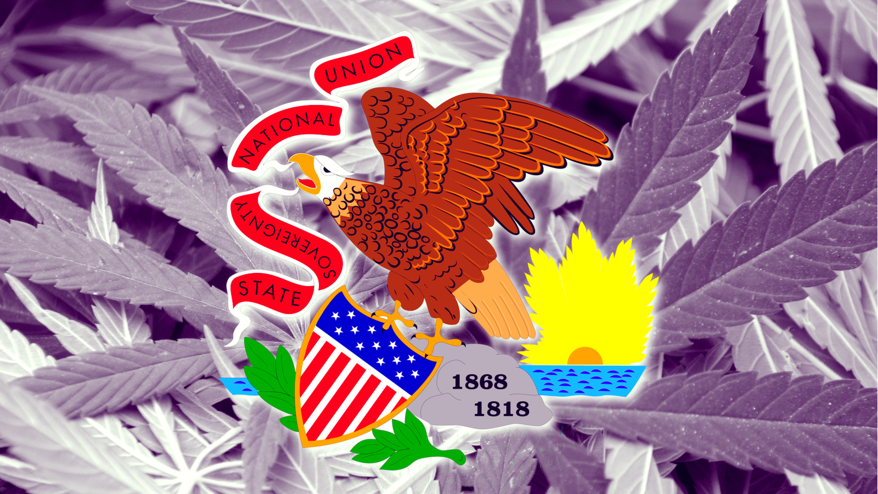 Illinois Cannabis Lottery Winners