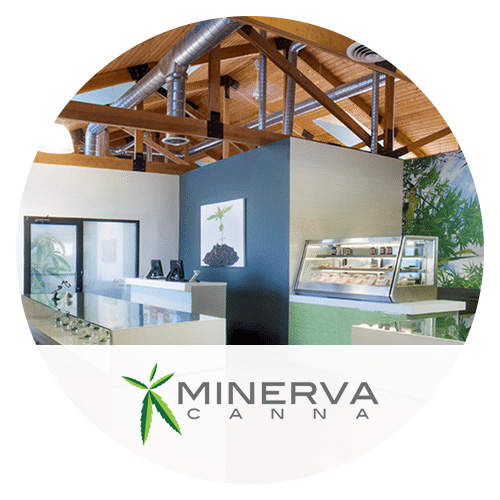Justin-Minerva