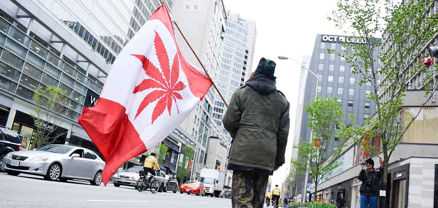 Sourcing Cannabis in Canada