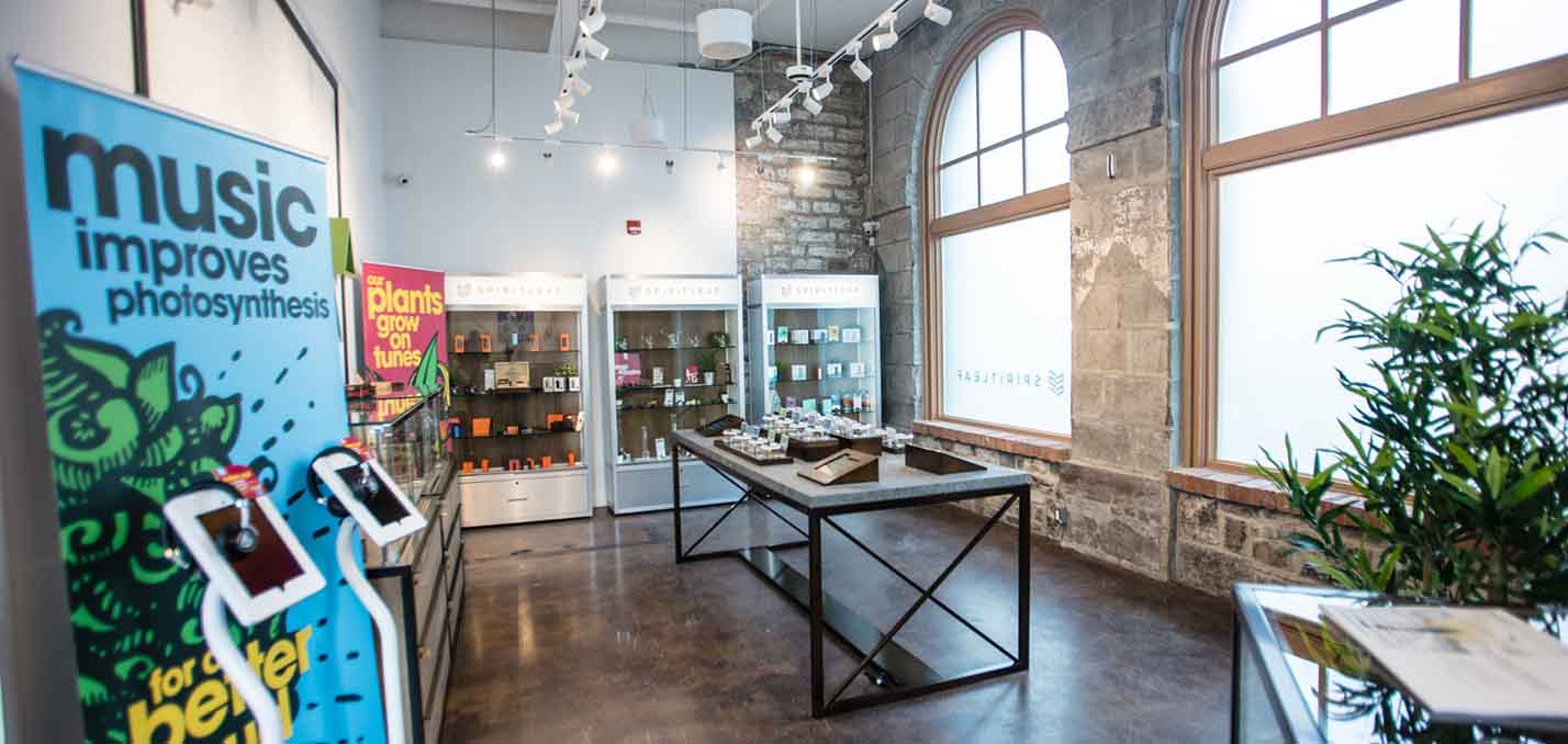 Designing Your Cannabis Dispensary Guide